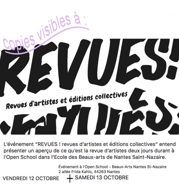 http://copiedouxm.cluster017.ovh.net/files/gimgs/th-10_revues-nantes-web.jpg